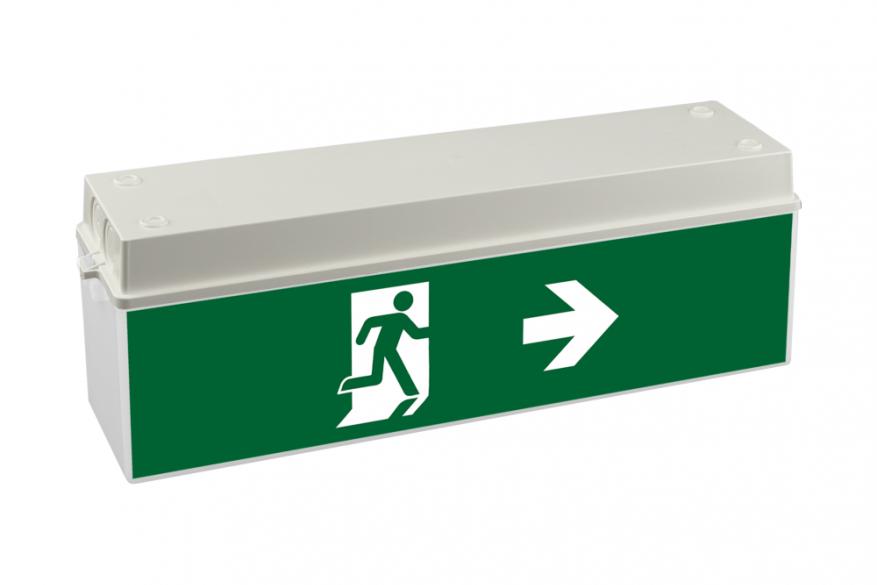 Φωτιστικά Ασφαλείας, Addressable Bau Light