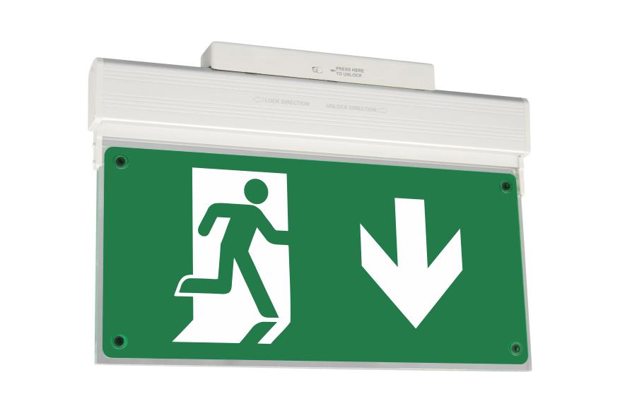 Φωτιστικά Ασφαλείας, ADDRESSABLE ECO LIGHT ZLD